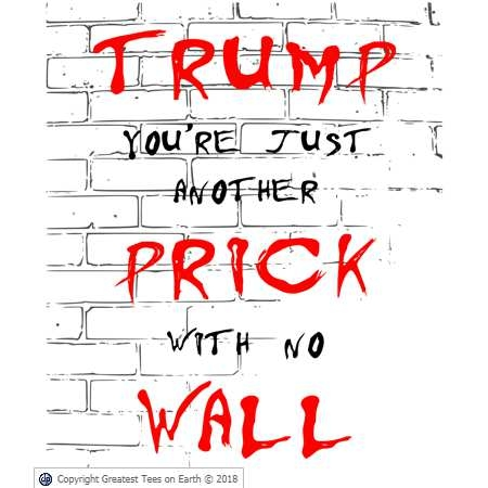 Trump you're just another prick with no wall