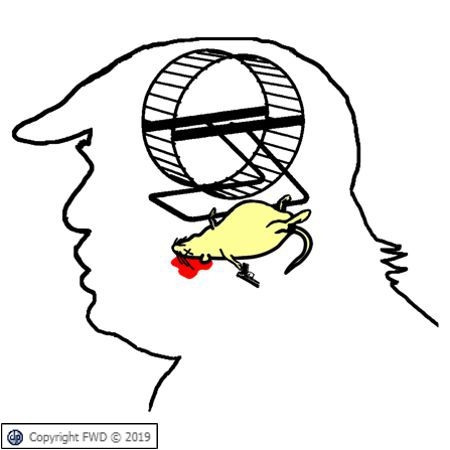 Trump's Brain Hamster Wanted